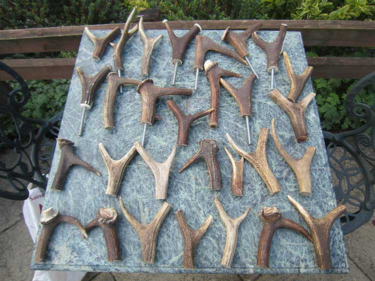stag-antler-handles