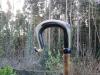 Balwen Welsh mountain horn crook