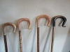 Selection of various breed rams horn crooks