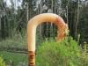 hen-pheasant-rams-horn-market-stick