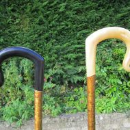 Buffalo-horn-and-rams-horn-