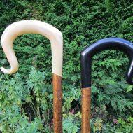Rams-horn-and-Buffalo-horn-
