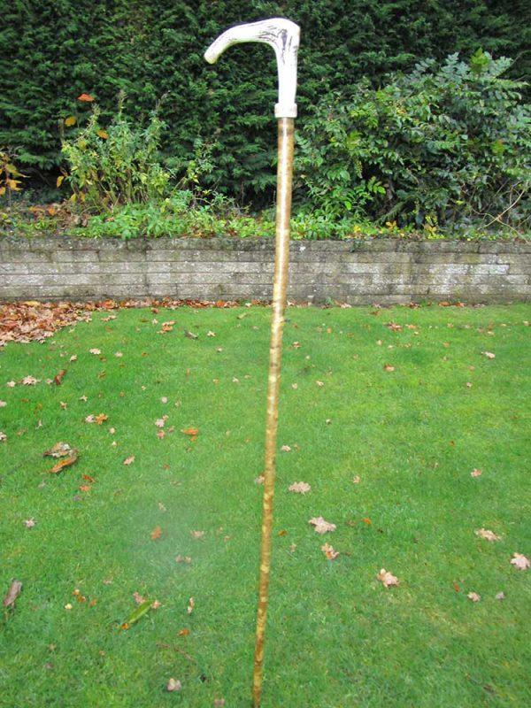 Stag antler coronet walking stick