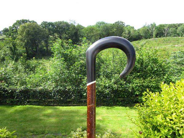 Buffalo horn market stick