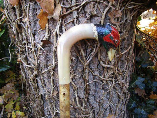 Rams horn cock pheasant market stick