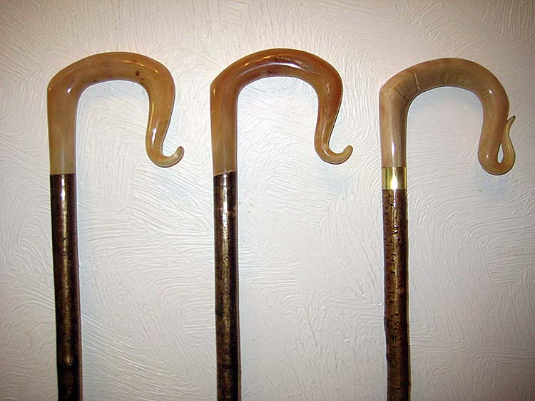 A selection of rams horn crooks