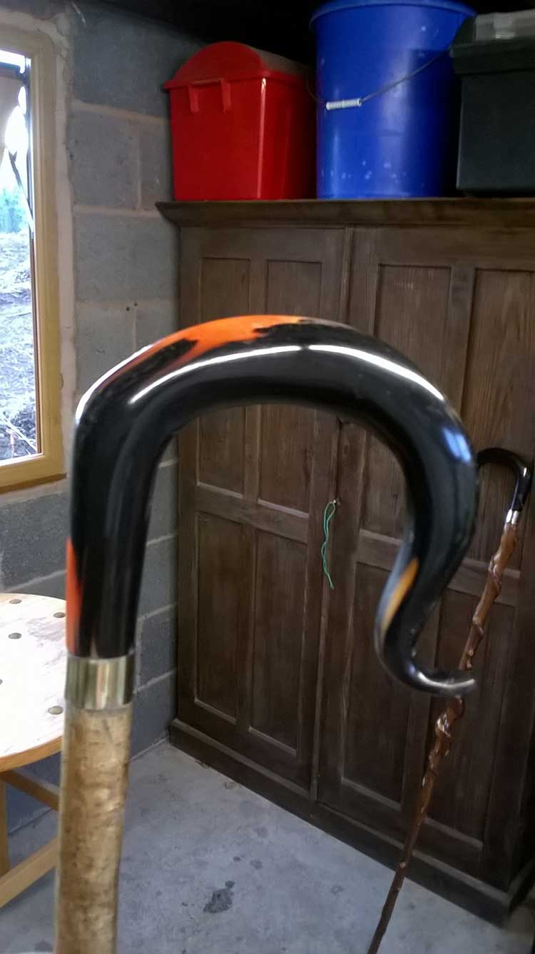 orange welsh horn (1)