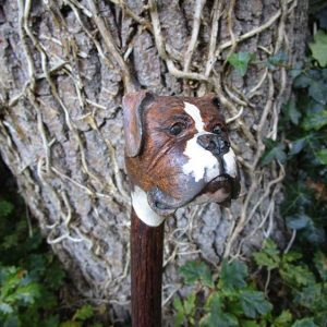 boxer dog walking stick